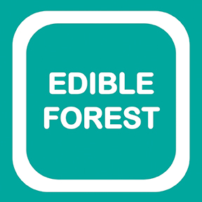 edible forest