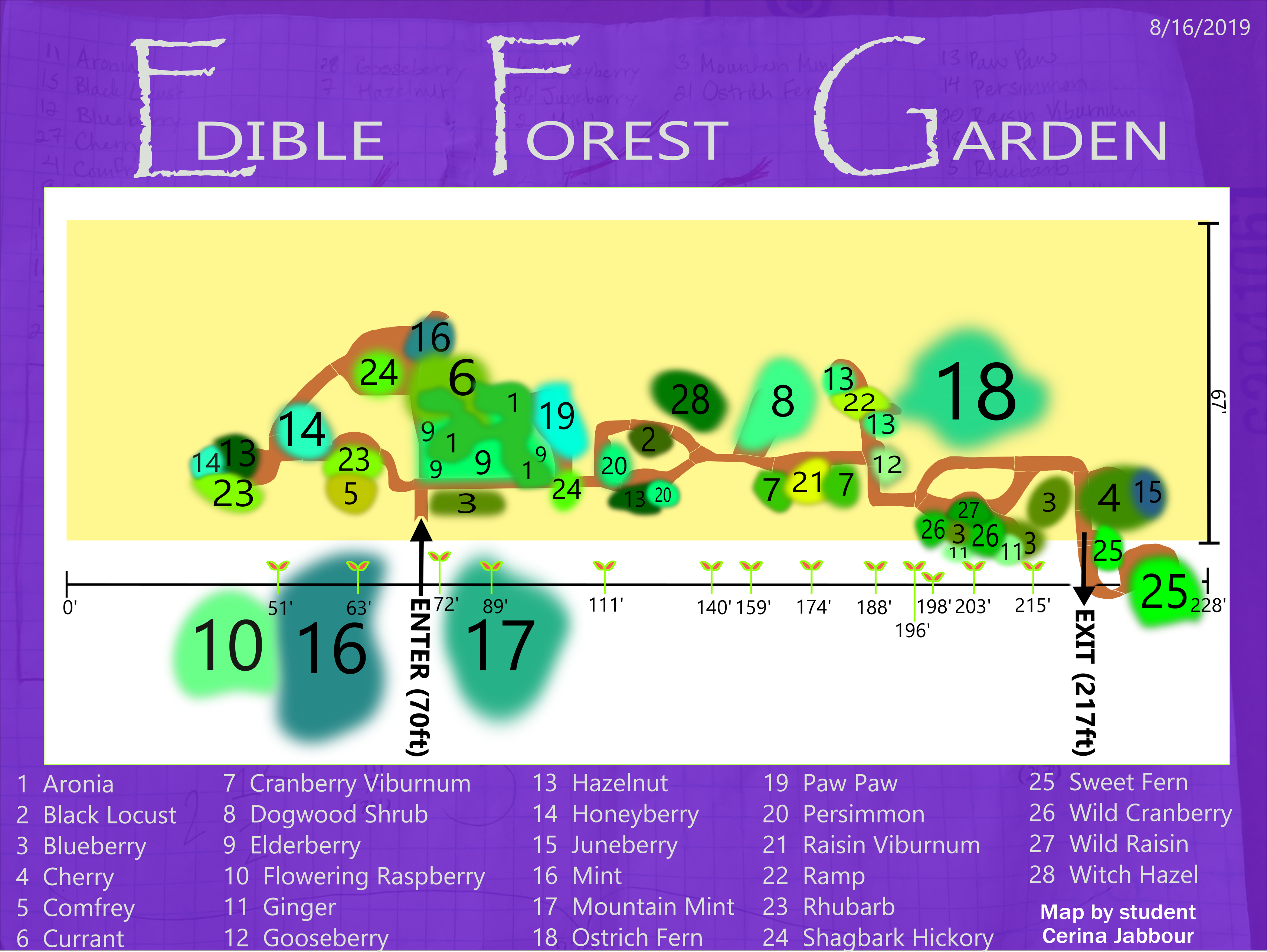 Edible Forest Garden